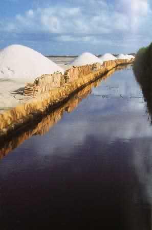 Salz, das weiße Gold des Meeres, die Salinen von Mozia
