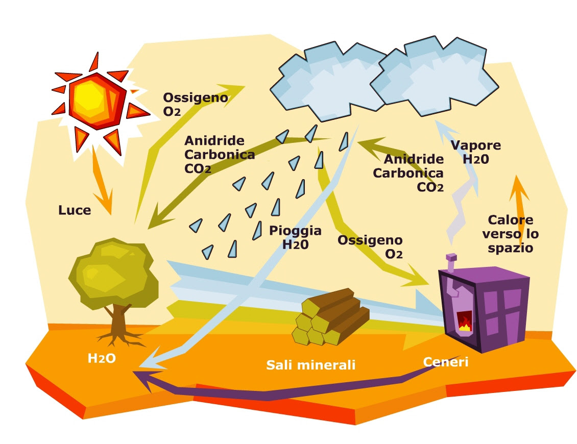 Risultati immagini per Produzione energetica da biomassa. Vantaggi e svantaggi vedi