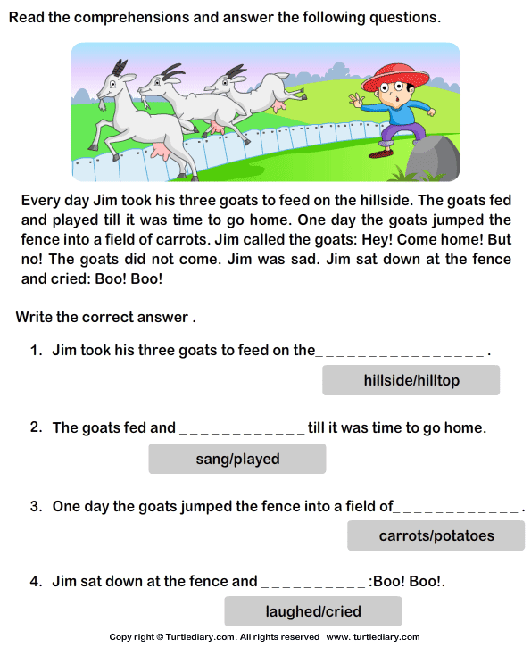 Reading Prehension Stories 5 Worksheet TurtleDiary