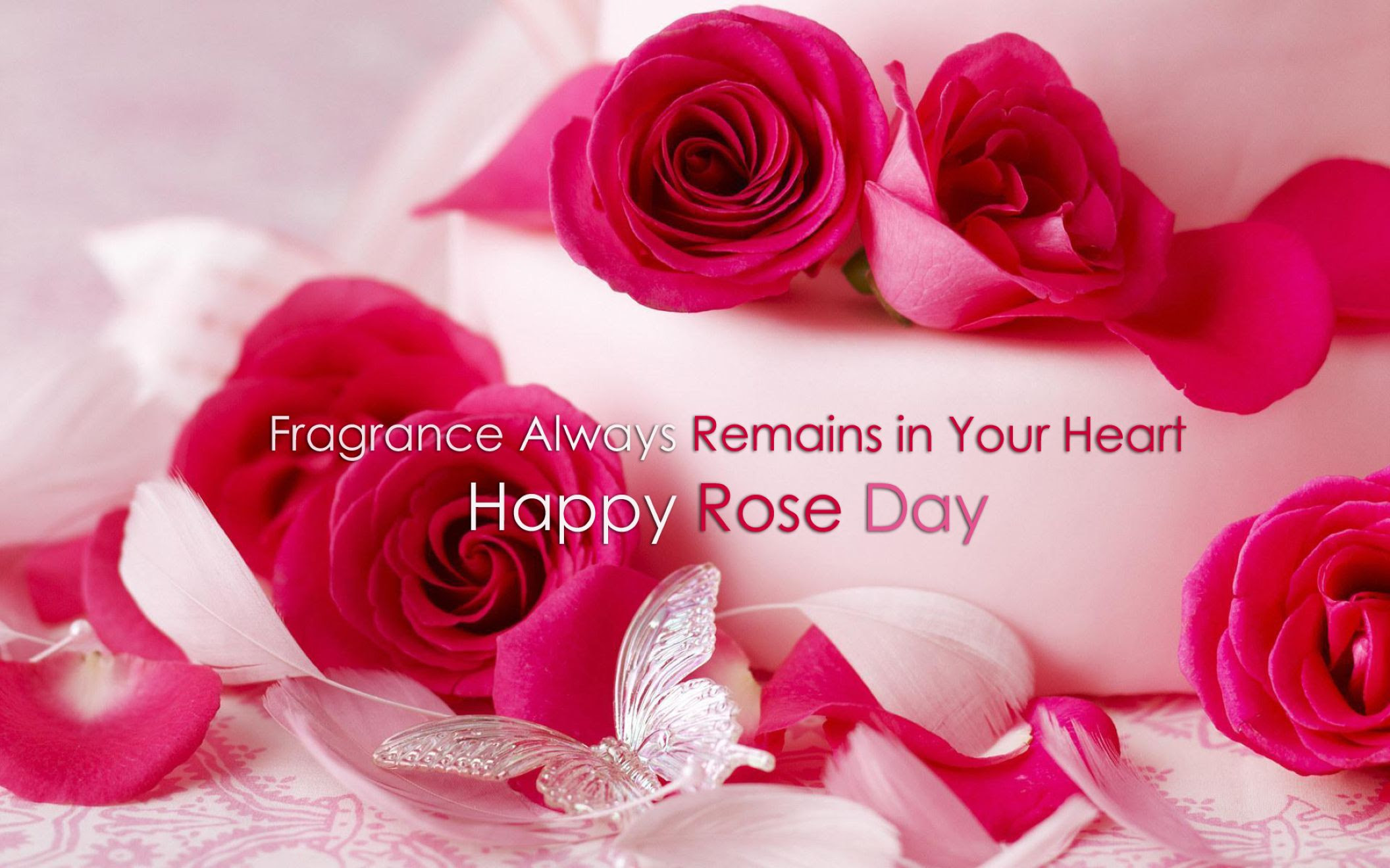 Happy Rose Day 2016 Red Rose With Love Quotes Wallpaper