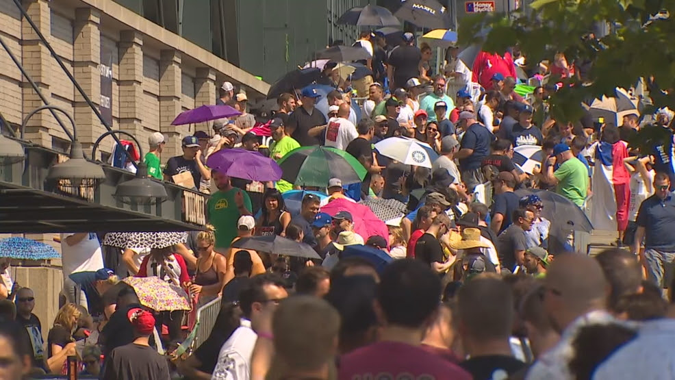 Pearl Jam Concerts At Safeco Field Raise 11 Million To Fight