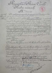 Mircea's birth certificate - RNA