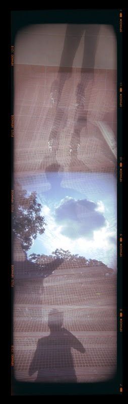 ywholga-skystepsmecolour.jpg