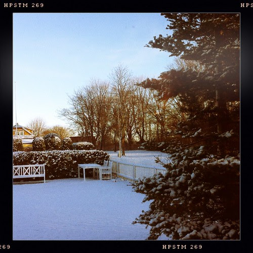 Snø :: snow