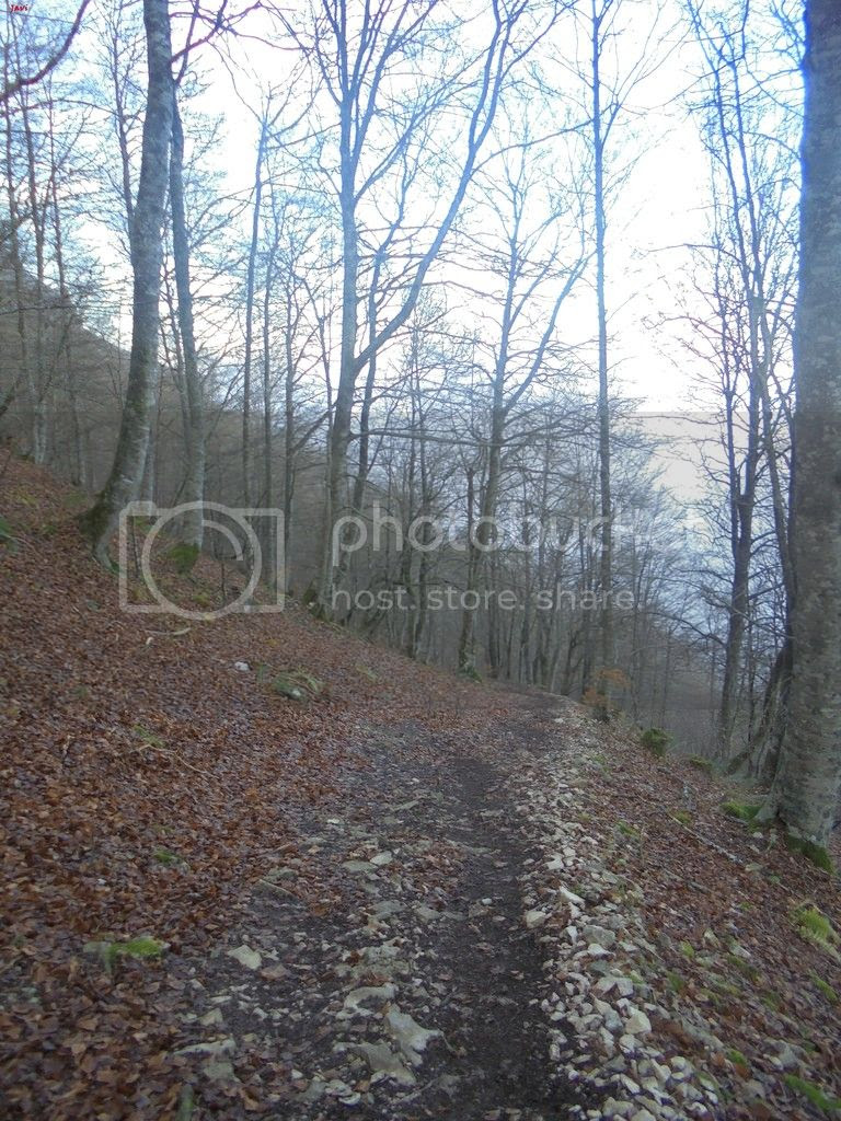 photo SAN DONATO 12-12-15 017_zpsisrsqvjb.jpg