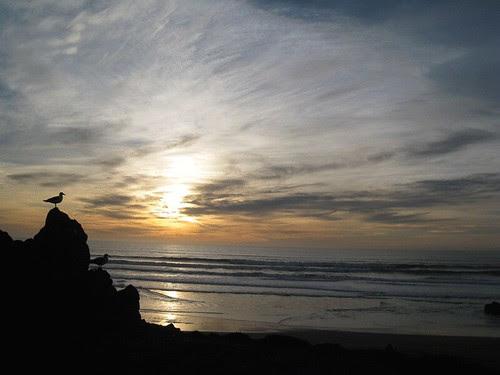 Sunset at Bodega Bay