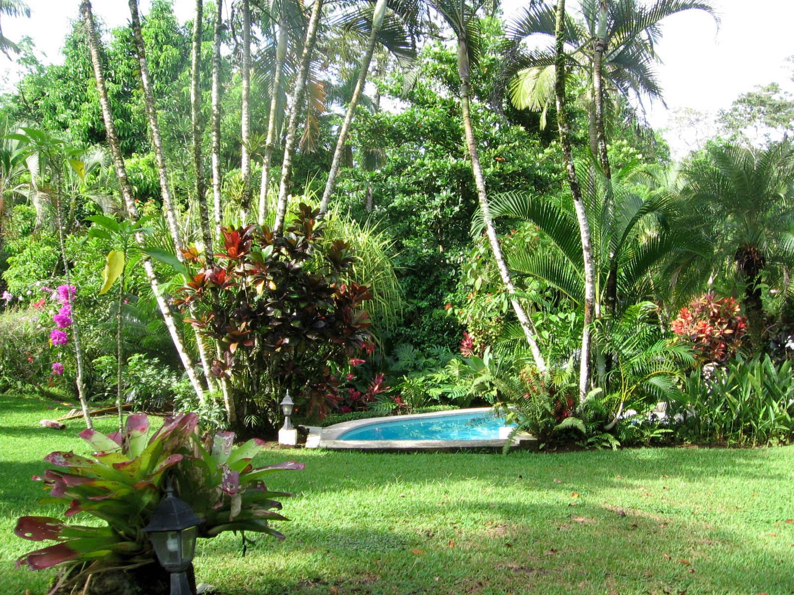 21+ Beautiful Tropical Landscaping Ideas Photos ...