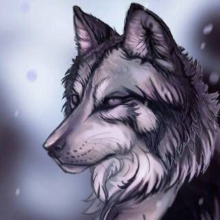 Dibujos Lobos Shared Folder Lobos Míticos Amino