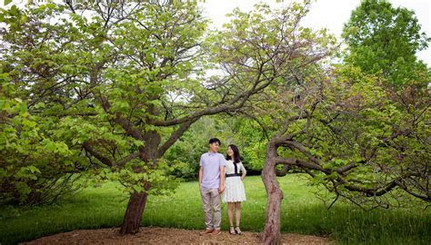 Guelph Wedding Photographers   Bing   Heng   University of