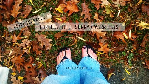 {Gratitude} Day 5 ~ Beautiful Days