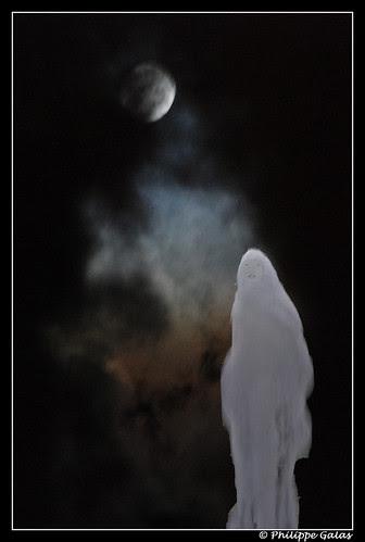 Nuit de Samain