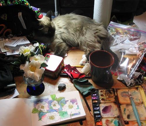 The desk in my studio