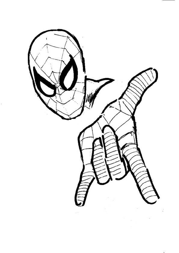 malvorlagen spiderman kinder