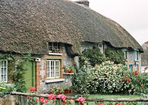 Ireland Green Door Thatched Cottage Home And Wall Decor Fine Art 5 x 7 Photograph - Celticcatphotos
