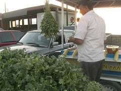 street seller iraklio selling fresh chickpeas