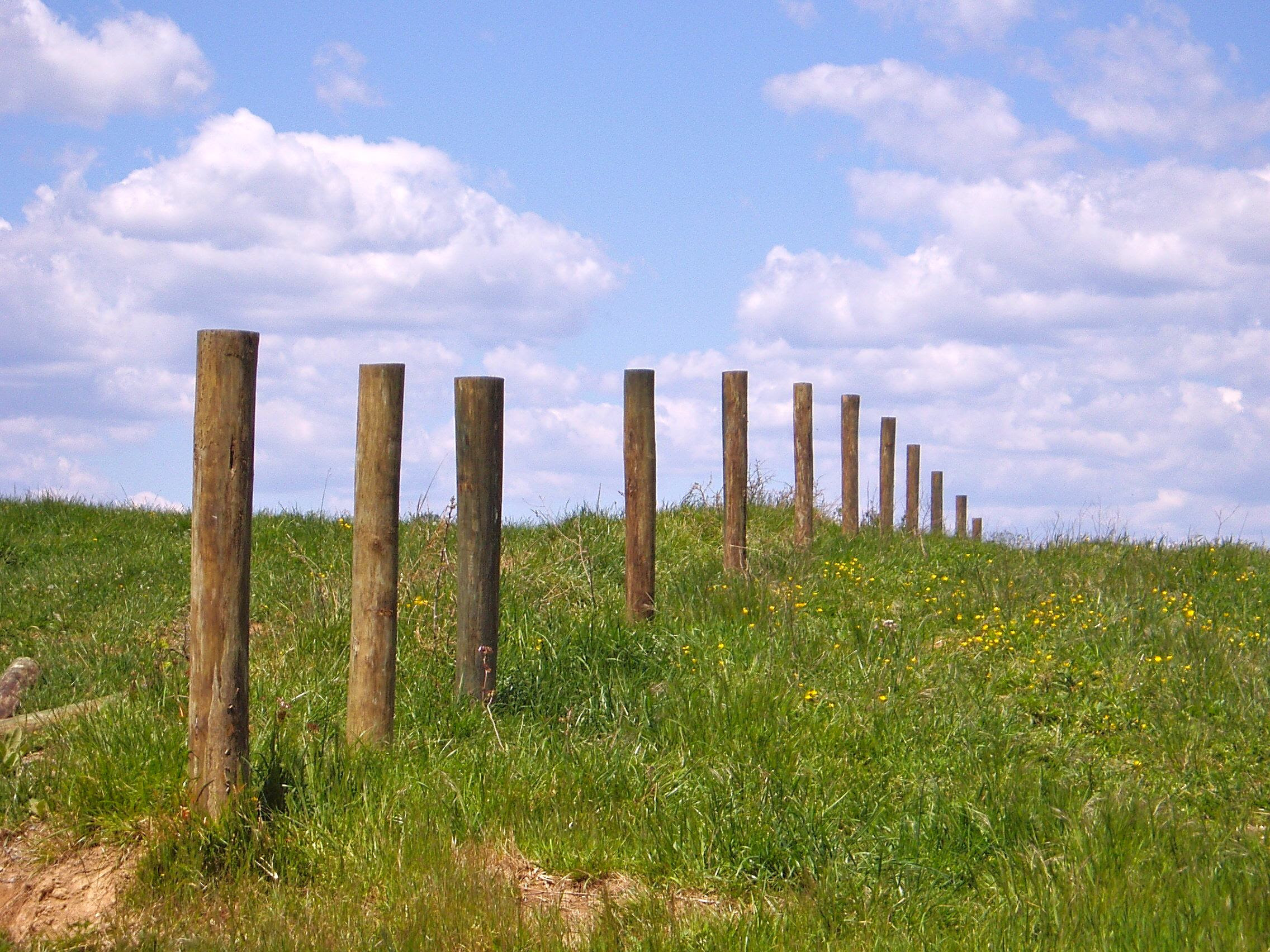New Fence Posts Smith Meadows