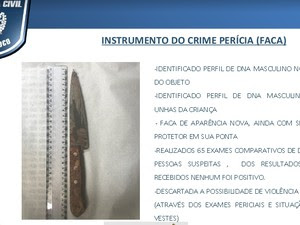 Polícia encontrou DNA de um homem na faca do crime  (Foto: Reprodução / SDS)
