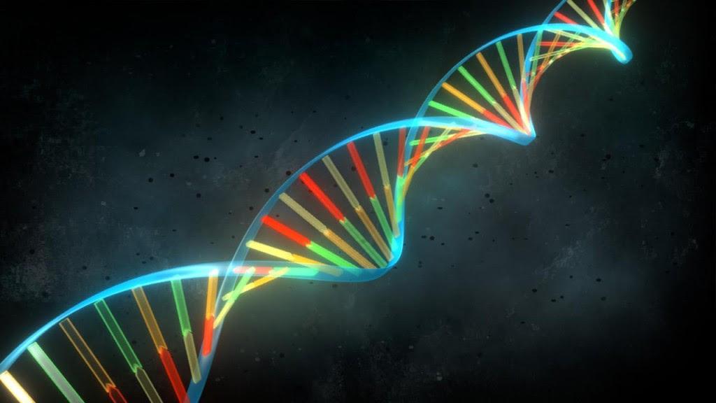 ADN-1024x576