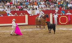 Plaza de toros de Mamacona