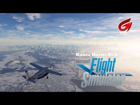 Review Microsoft Flight Simulator 2020