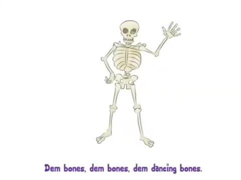 Iskelet Dansı Izle Video Eğitim Bilişim Ağı