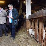 Les fermes vous ouvrent leurs portes tout le week-end