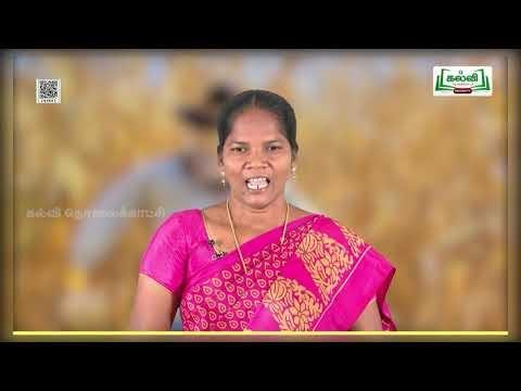 4th Tamil உரைநடை காவல்காரர் பருவம் 2 பாடம் 1 பகுதி 1 Kalvi TV