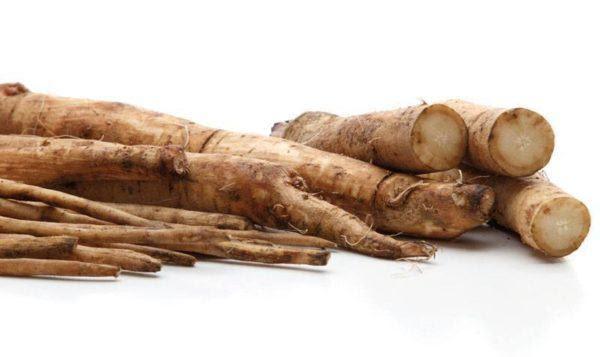 230-plantas-medicinales-mas-efectivas-y-sus-usos-bardana-raiz