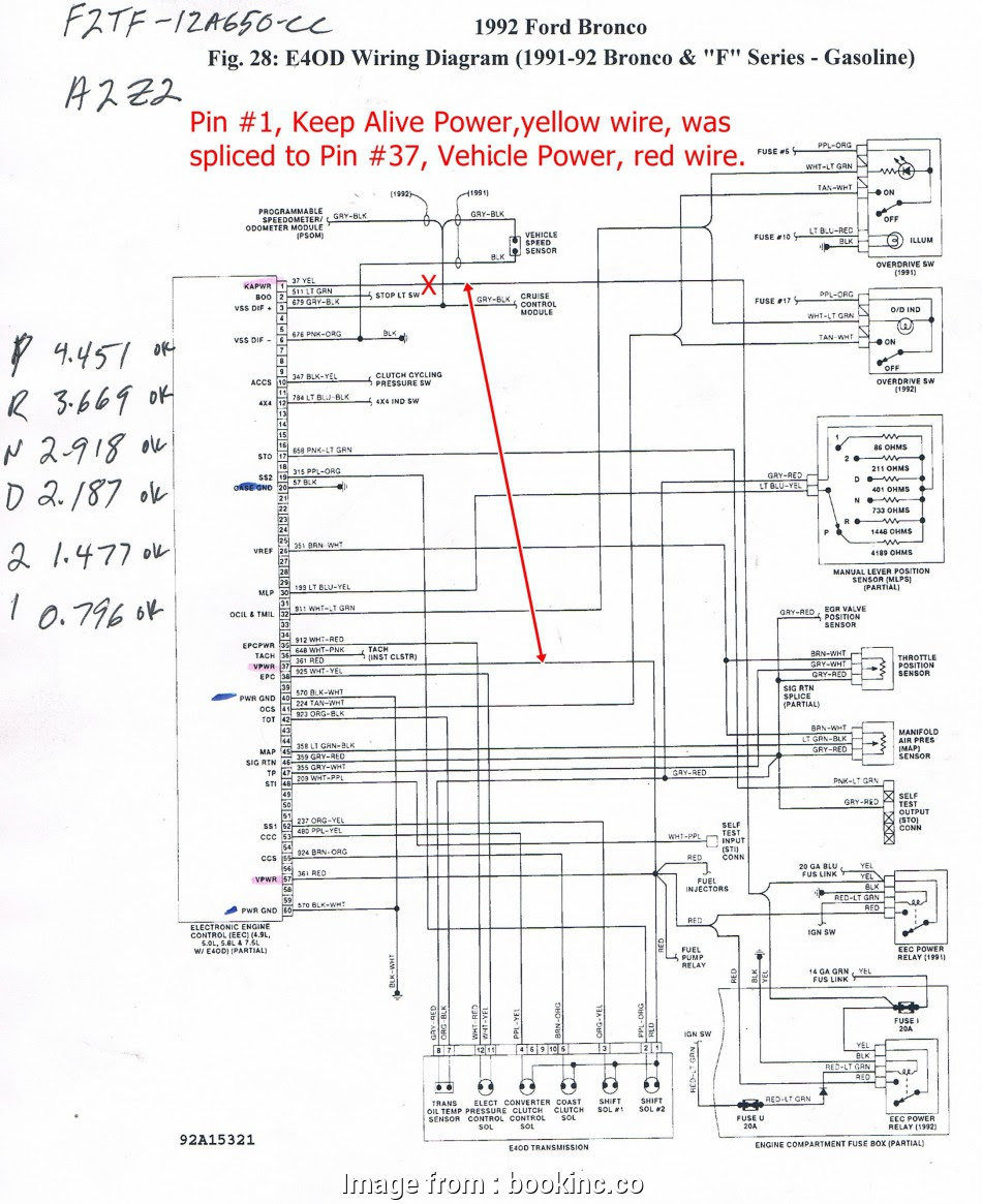 diagram] ford tempo radio wiring diagram full version hd quality wiring  diagram - anatomydiagram101.k-danse.fr  k-danse.fr