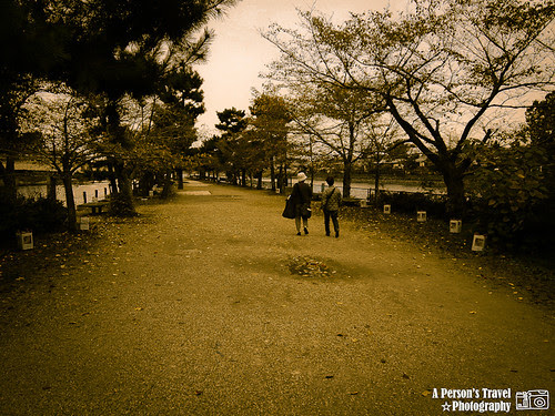 2011Kyoto_Japan_ChapTen_20