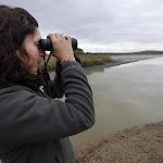 PHOTOS. Les espèces sauvages en danger dans la Marne, les Ardennes et l'Aisne