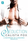 Seduction: A Bayfront Billionaire Novella