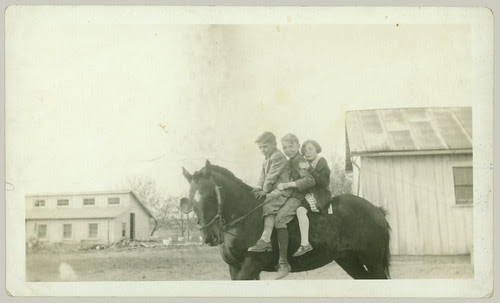 Three children and a horse