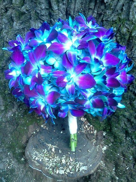 blue orchid bouquet   www.lyndseyloringdesign.com   NH ME