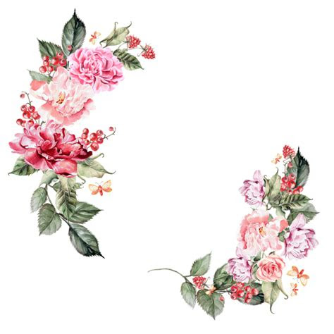 flowers border png hd flowers border png image