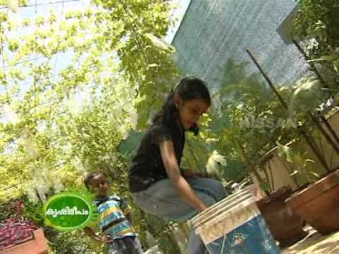 Create and develop successful businesses through farm for Terrace farming model