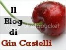 Il Blog di Gin Castelli