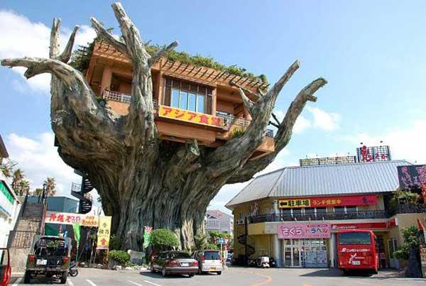 amazing-treehouses-20