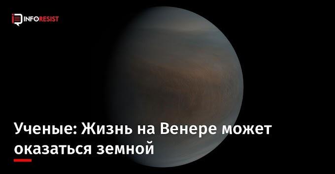 Ученые: Жизнь на Венере может оказаться земной