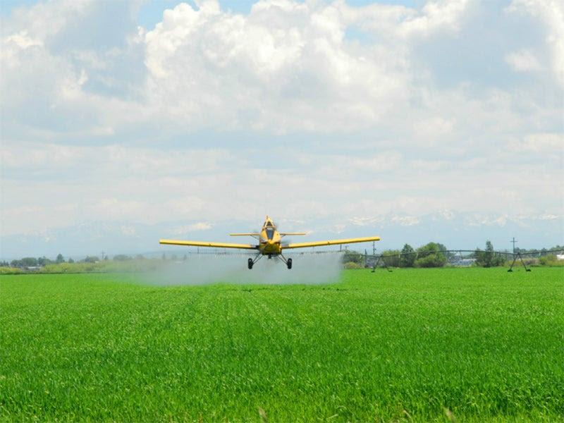A crop duster sprays pesticides over a farmfield.