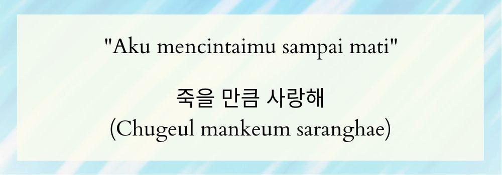 Kata Kata Mutiara Dalam Bahasa Korea Selatan   kata kata buat status