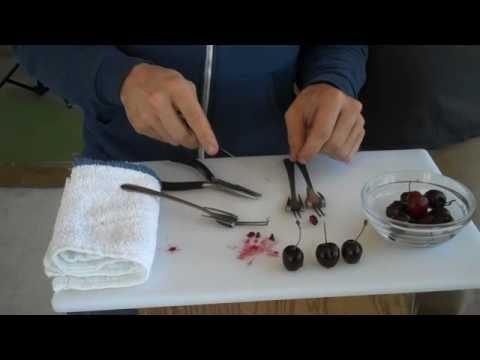 Recettes de conserves maison le d noyauteur de cerises for Autoclave pour conserves maison
