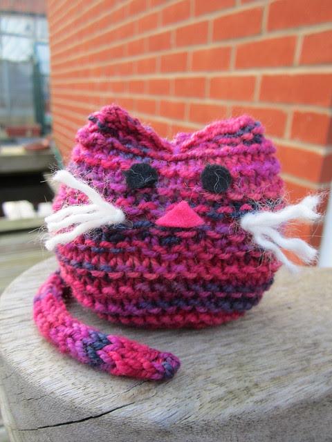 knitting club cat