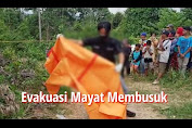 VIDEO: Evakuasi Mayat Membusuk di Desa Dusun Tuo Sumay