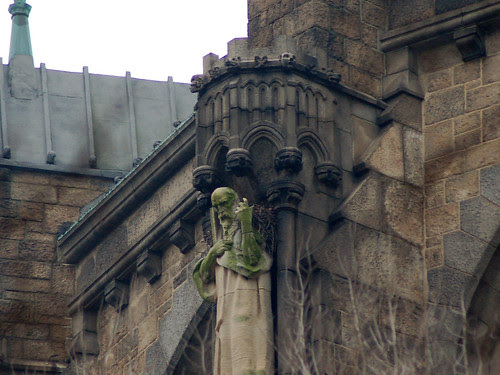 Red-Tailed Hawk Nest at Cathedral of St. John