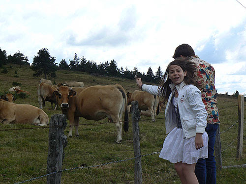 Paul, Zoé et les Vaches.jpg
