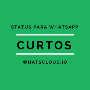 Os Mais Criativos E Inteligentes Status Para Whatsapp Top