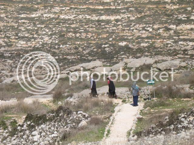 Tel Shiloh 5