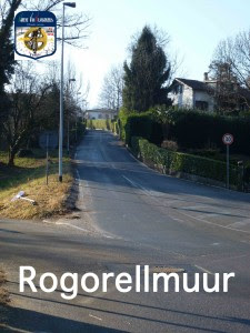 m16 Rogorellmuur