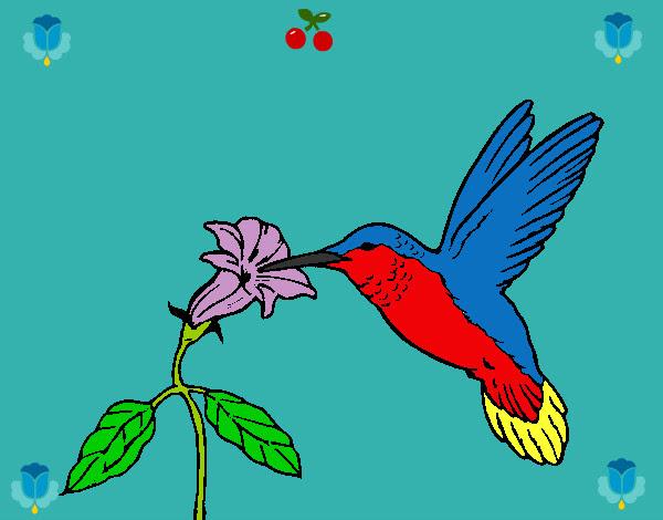 Dibujo De Primario Pintado Por Horsyta En Dibujos Net El Dia 24 11
